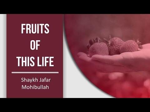 Fruits of this Life   Shaykh Jafar Mohibullah   English