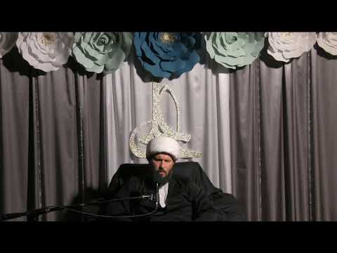 Shaykh Hamza Sodagar speech on the Martyrdom of Imam al Khadim (as) - English