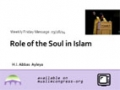 [Weekly Msg] The Role of the Soul in Islam | H.I. Abbas Ayleya | 28 March 2014 | English
